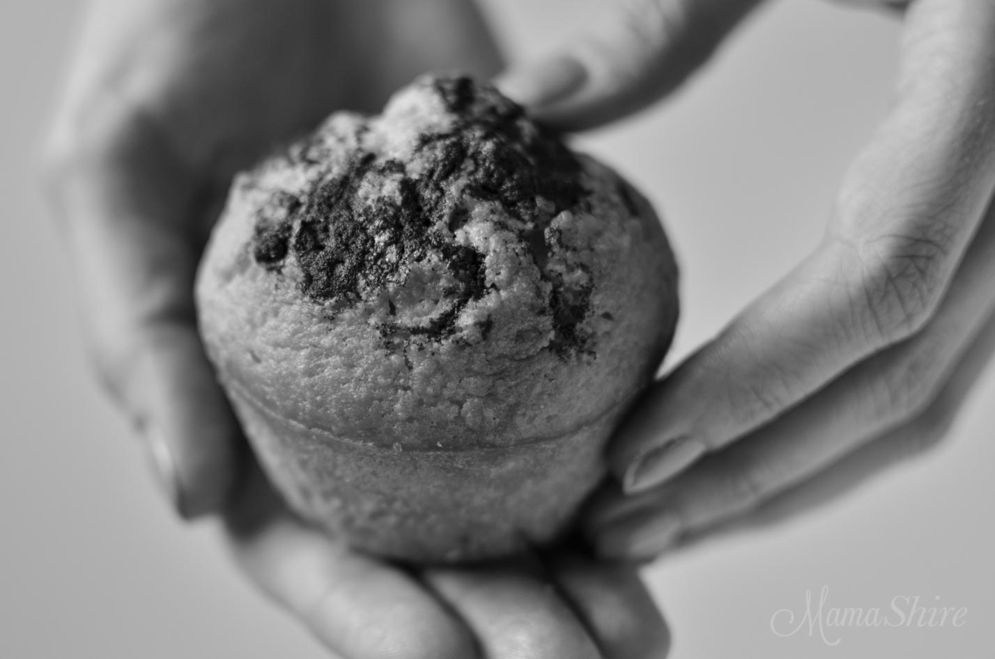 Cinnamon Muffins (Gluten-Free) THM-S