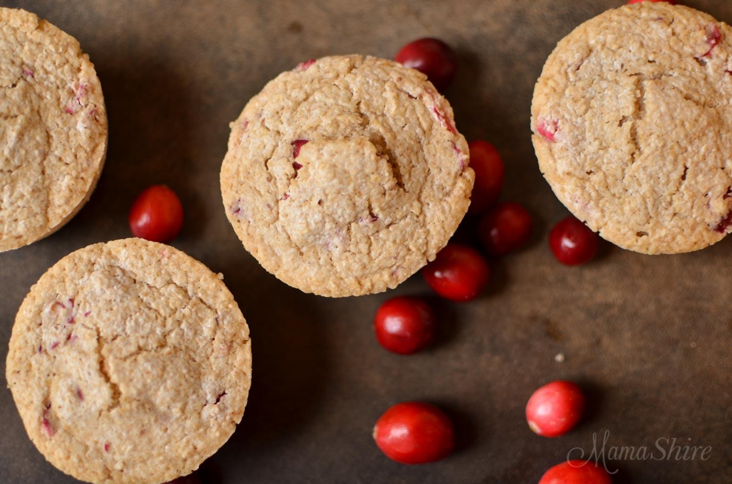 Oatmeal Orange Cranberry Muffins - Gluten-Free, Dairy-Free, Sugar-Free THM-E - MamaShire.com