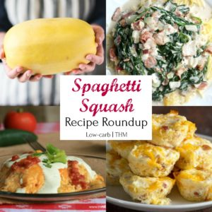 Spaghetti Squash Recipe Roundup - Low-carb, Trim Healthy Mama