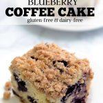 Dairy-free blueberry coffee cake.
