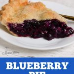 A slice of fresh baked blueberry pie.