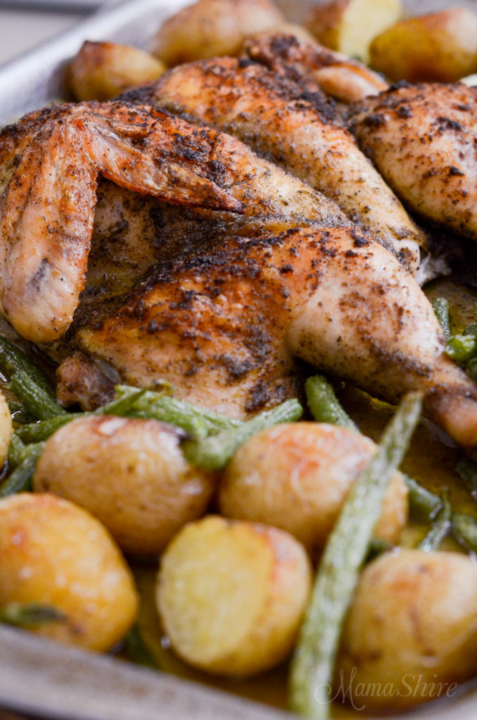 A side view of a roasted chicken that has been butterflied with potatoes and green beans.