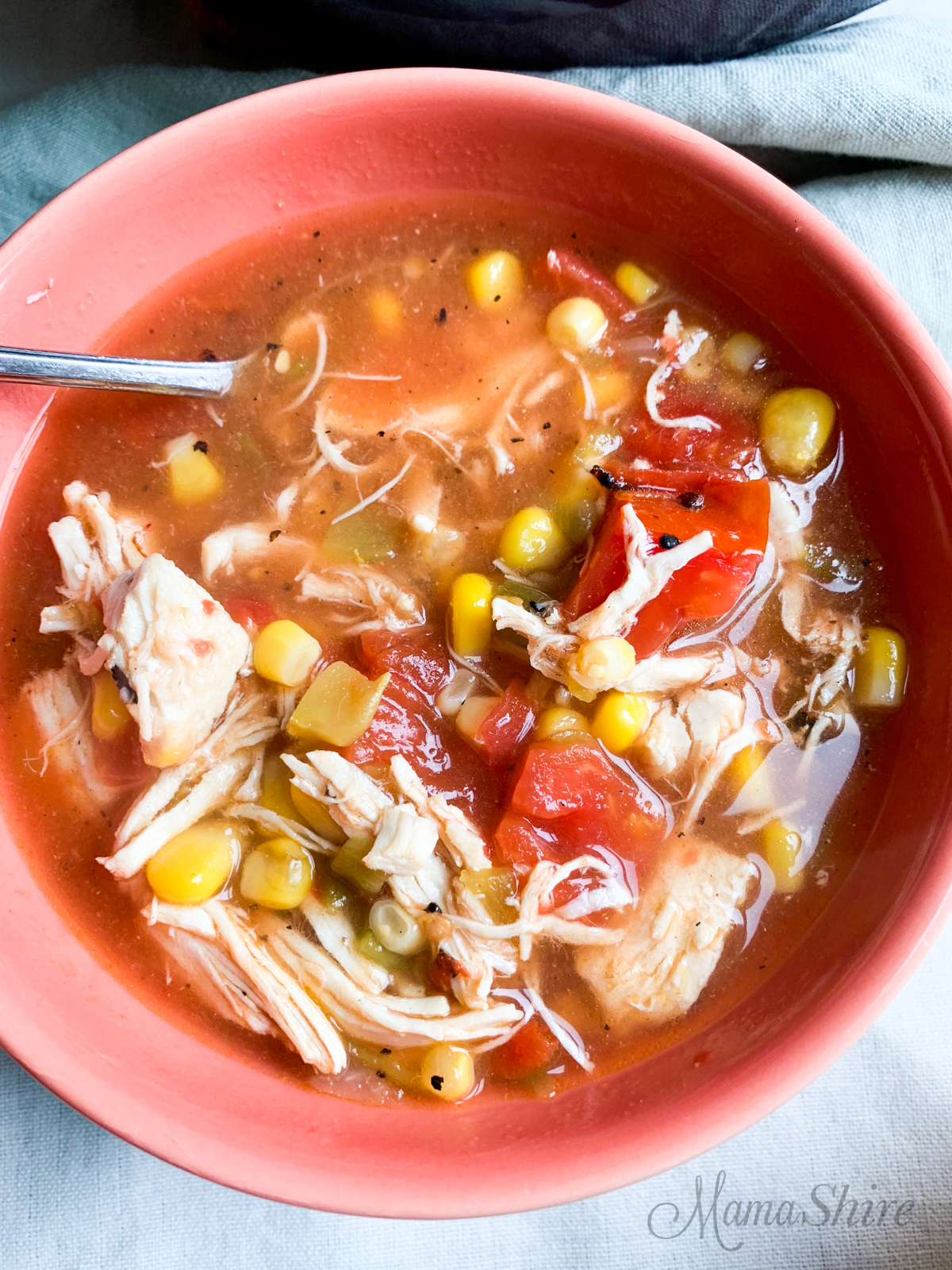 A heart warming bowl of chicken tortilla soup.