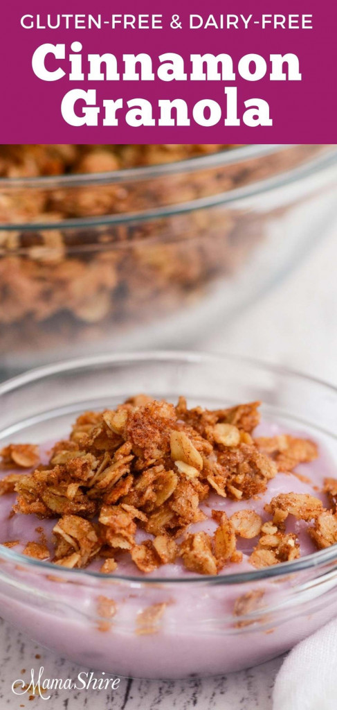 A bowl of dairy-free blueberry yogurt with gluten-free cinnamon granola sprinkled on top.