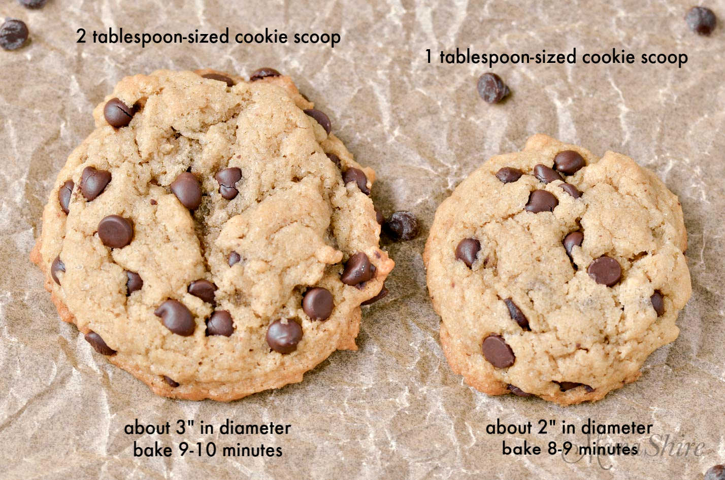 Two cookies but different sizes to compare cookie scoops.