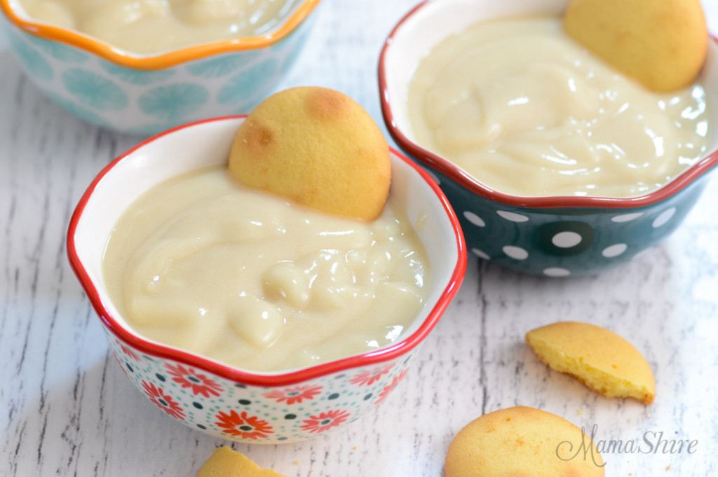 Cute little dessert bowls with homemade dairy-free vanilla pudding.