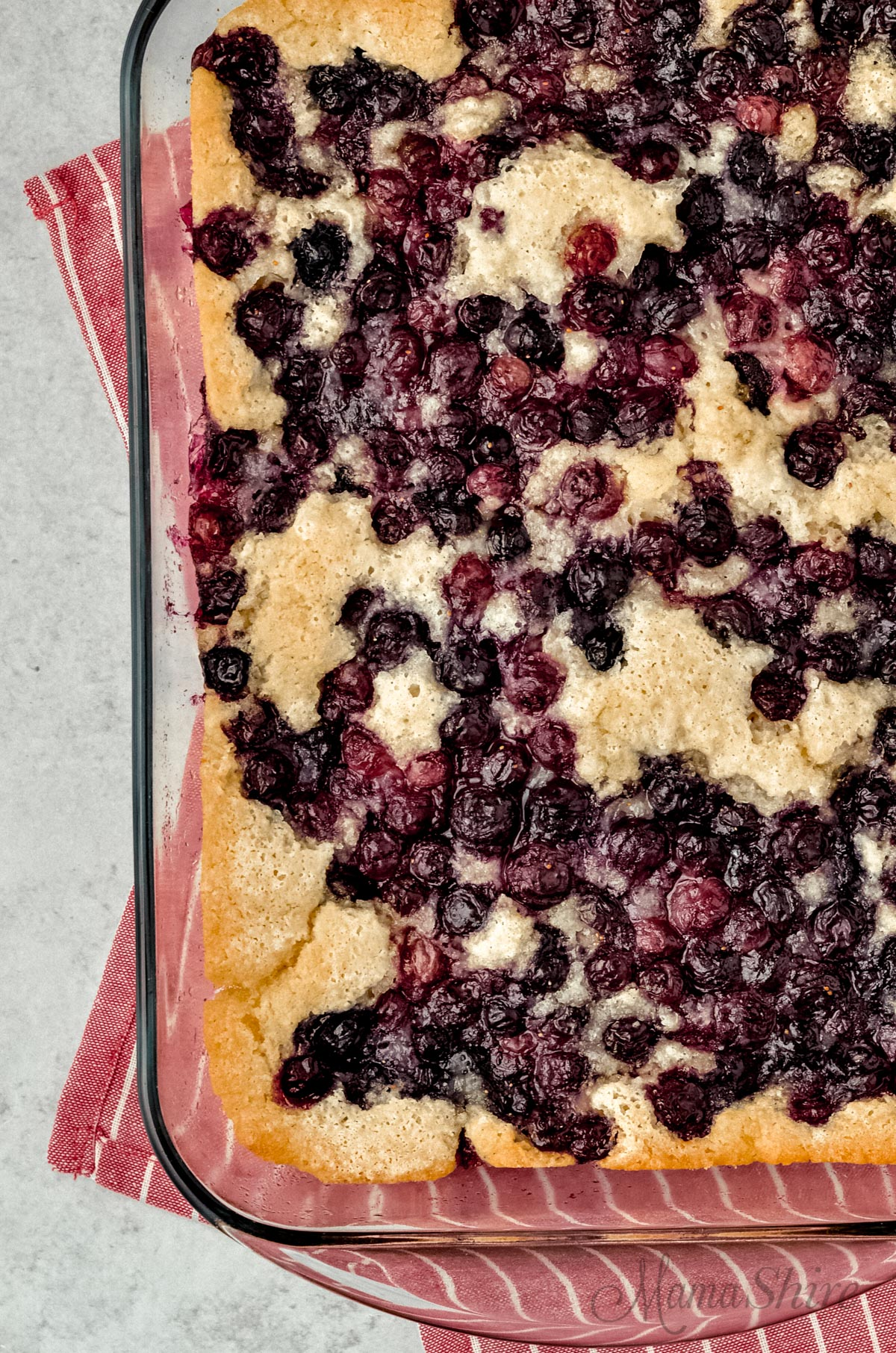 Delicious gluten-free blueberry cobbler with a hint of cinnamon.