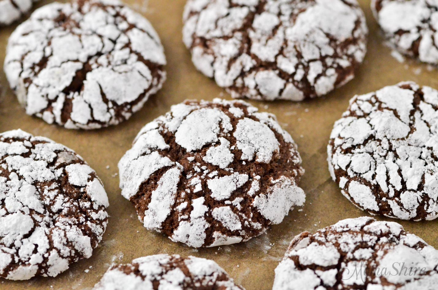 Chocolate cookie covered in powdered sugar.