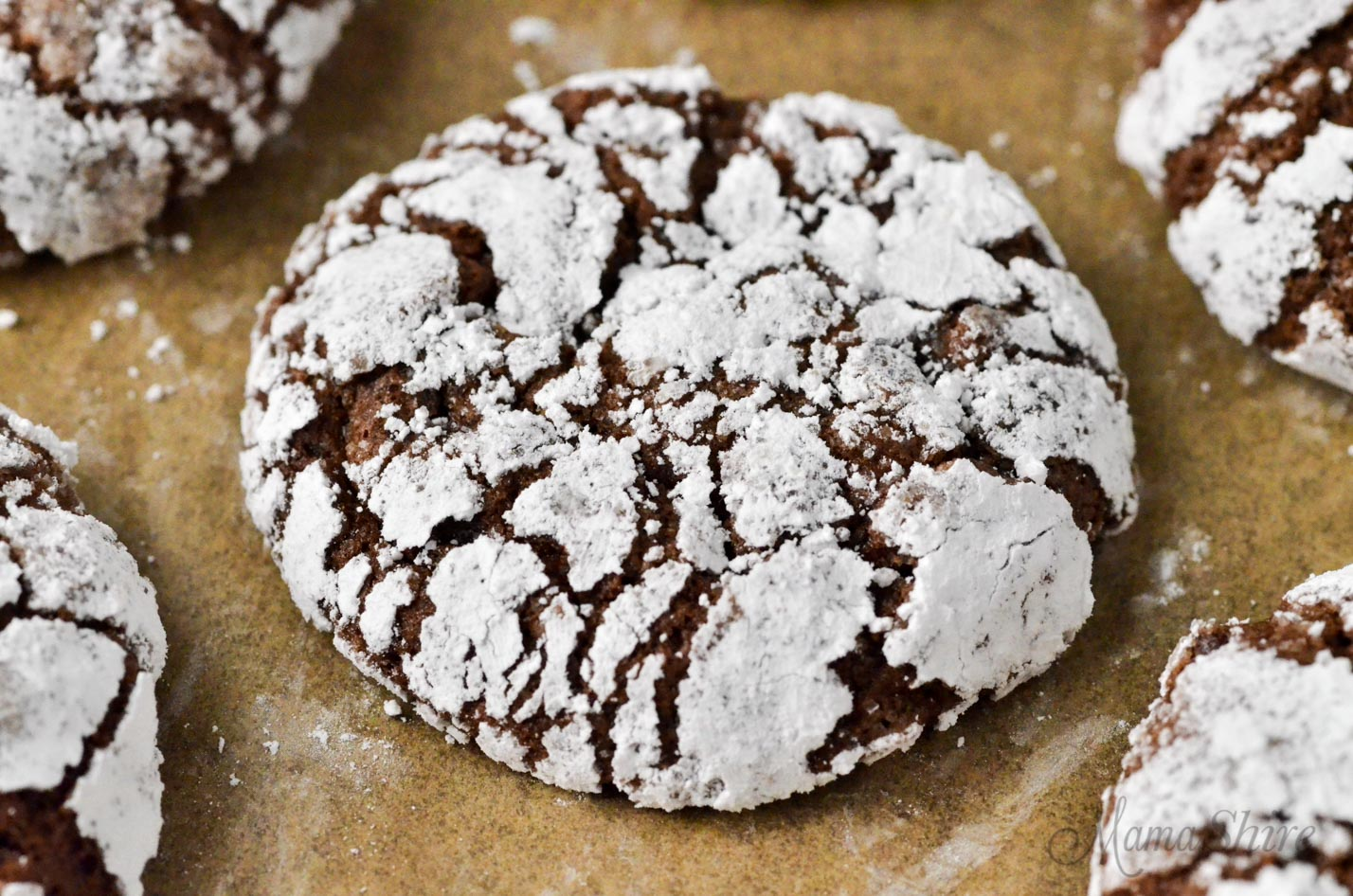 Chocolate cookie with powdered sugar.