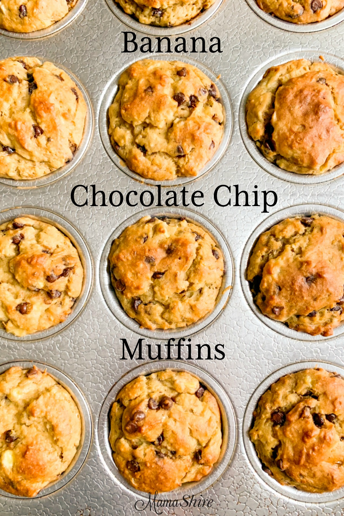 Moist gluten-free dairy-free banana chocolate chip muffins in a muffin pan.