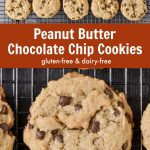 Peanut Butter Chocolate Chip Cookies (Gluten-Free)