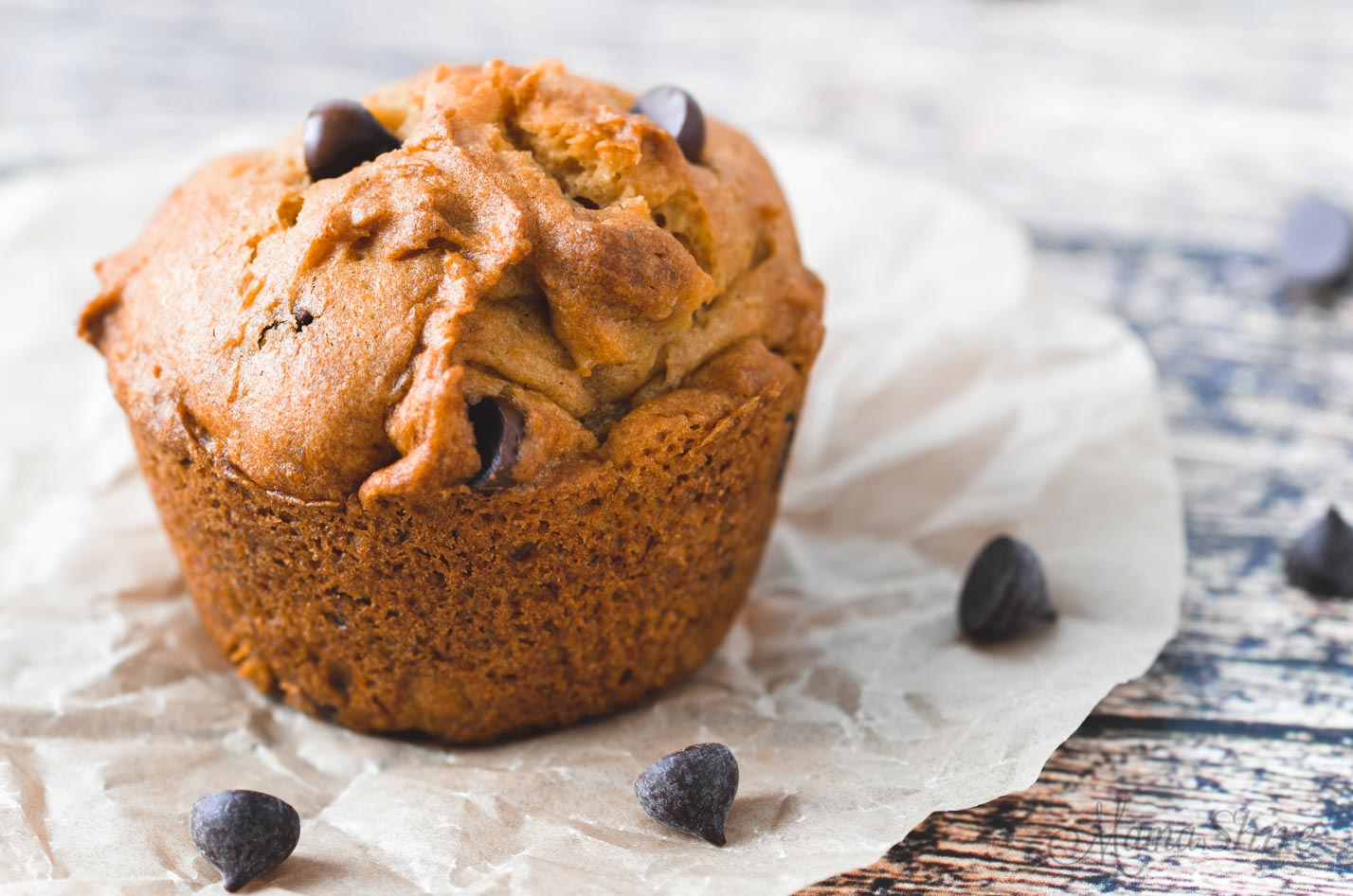 One pumpkin chocolate chip muffin with some chocolate chips scattered around it.