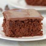 A yummy zucchini brownie made with a gluten-free and dairy-free recipe.