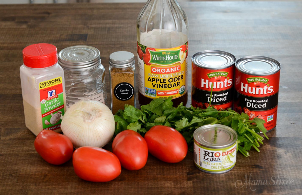 This picture show the ingredients for homemade restaurant-style salsa.
