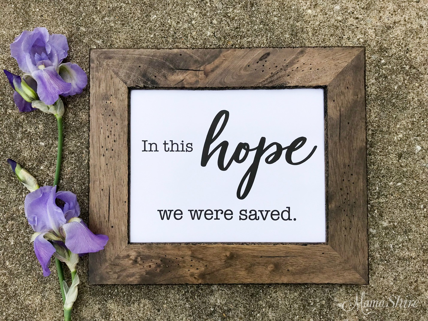 Printable PDF of In This Hope We Were Saved.