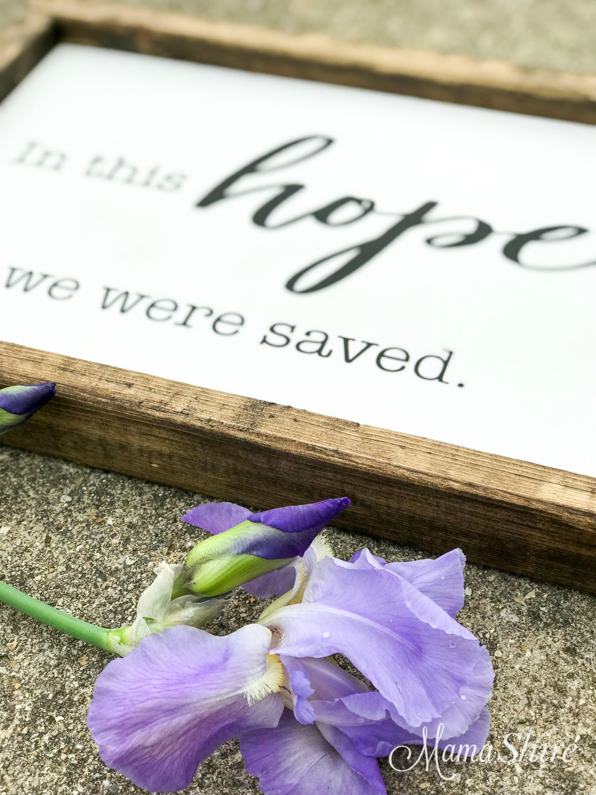 Close up of wood sign of In This Hope We Were Saved with iris.